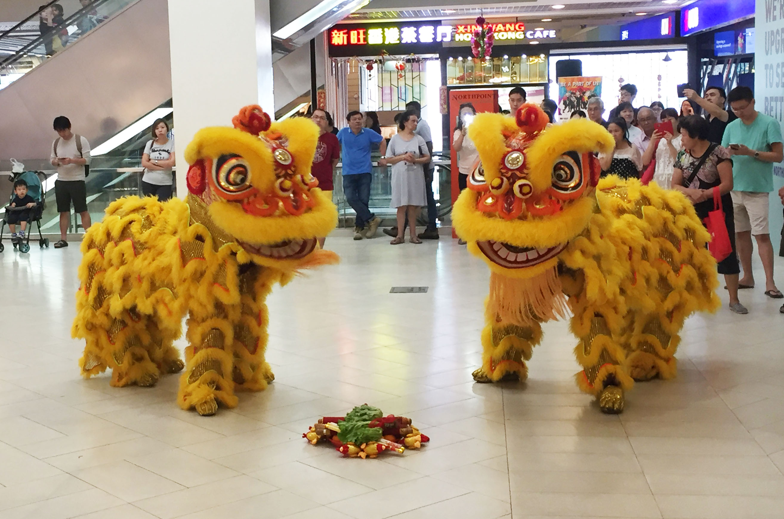 Lion Dance Cai Qing